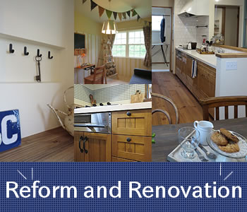 Reform and Renovation